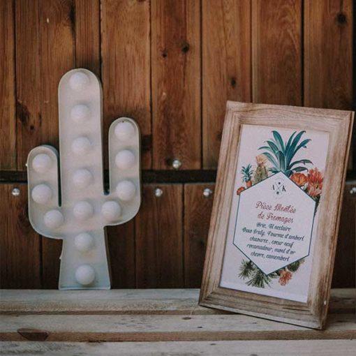 location cactus lumineux